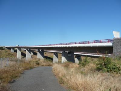 INS - Viaducs de la Savane