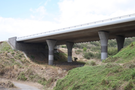 INS - Route des Tamarins 60 OA courants - 3